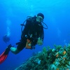 Up to 65% Off Scuba-Diving Class for One or Two