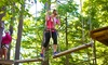 Gunstock Mountain Resort - Gunstock Mountain Adventure Park: Entry to Aerial Treetop Adventure Course for Two or Four at Gunstock Mountain Resort (Up to 41% Off)