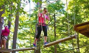 Gunstock Mountain Resort: Entry to Aerial Treetop Adventure Course for Two or Four at Gunstock Mountain Resort (Up to 41% Off)