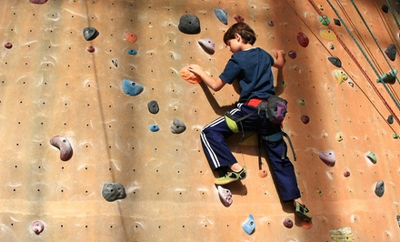 $55 for an Indoor Rock-Climbing Membership & Intro Climbing Lessons at Adventure Rock Indoor Climbing Gym ($99 Value)