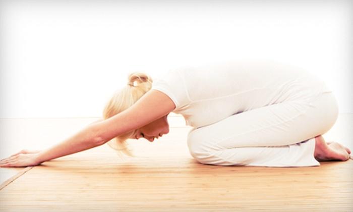 Pro Martial Arts - Novi: $25 for 10 Yoga Classes at Pro Martial Arts ($100 Value)