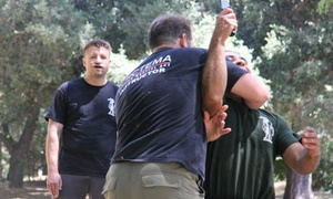 North County Systema: $45 for $150 Worth of Martial-Arts Lessons — North County Systema