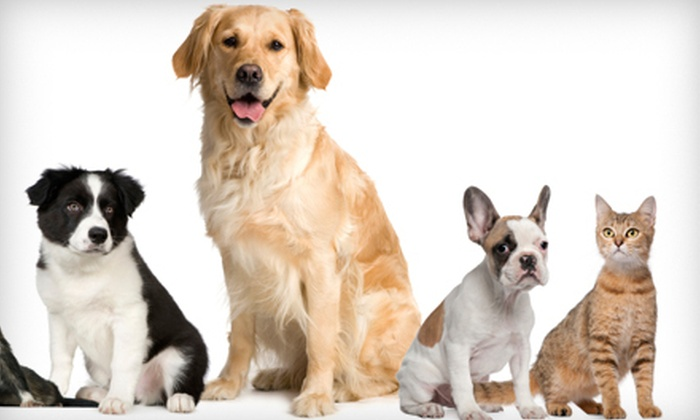 EntirelyPets: $15 for $30 Worth of Pet Supplies, Care Products, Food, and Treats from EntirelyPets