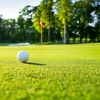 Up to 50% Off Golf with Cart Rental at Twin Brooks Golf Course