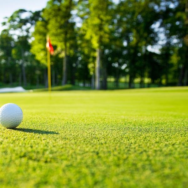 Alico Family Golf