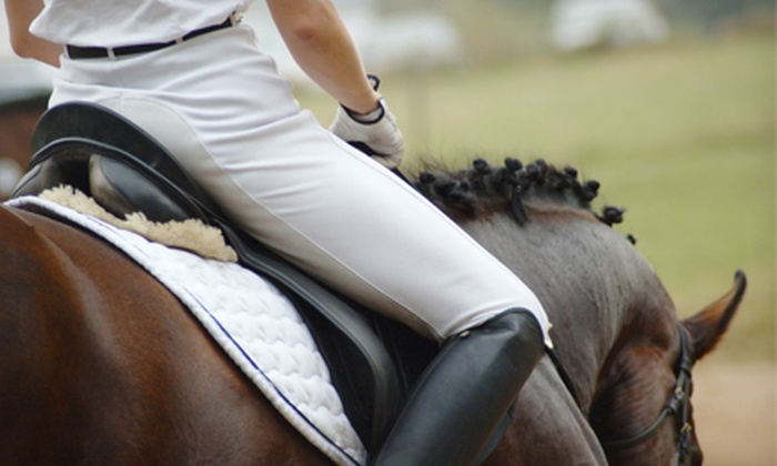 Sterling Shields Stables and Riding Academy - Washington: Group or Private Horseback Riding Lesson at Sterling Shields Stables and Riding Academy in Westfield (Up to 53% Off)