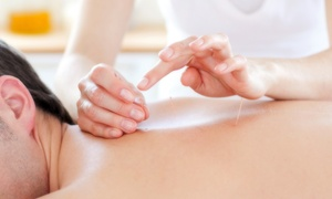 Carin Williams Acupuncture: Consultation with One or Three Acupuncture Treatments at Carin Williams Acupuncture (Up to 79% Off)