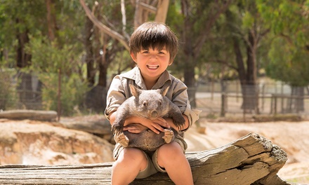 Ballarat Wildlife Park Admission: Child $16.65, Adult $29.70 or Family of Up to Six $81 Up to $90 Value