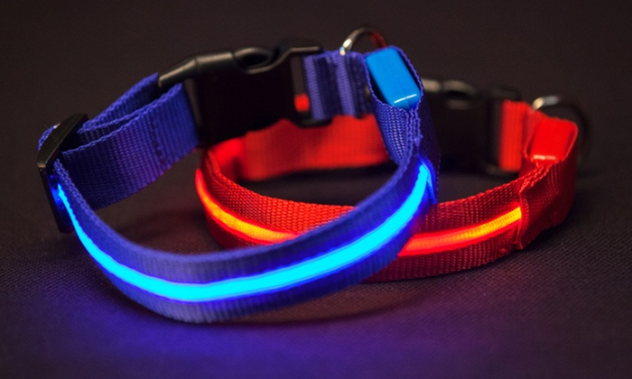 Series 5000 Ultra-Bright LED Collars and Leashes: Series 5000 Ultra-Bright LED Collars and Leashes. Multiple Colors Available. Free Returns.