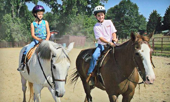 Heart of Dixie Farms - Elberton: One or Three 60-Minute Private Horseback-Riding Lessons at Heart of Dixie Farms in Elberton (Up to 53% Off)