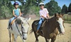 Heart of Dixie Farms - Hornbuckle: One or Three 60-Minute Private Horseback-Riding Lessons at Heart of Dixie Farms in Elberton (Up to 53% Off)