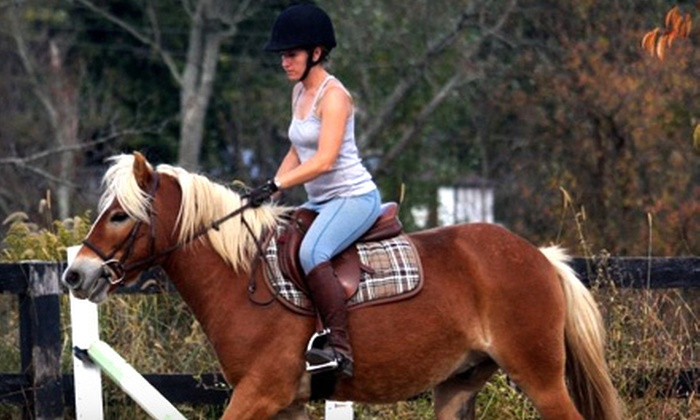 Paddle Stone Equestrian Center - Paris: Two or Four 30-Minute Horseback-Riding Lessons at Paddle Stone Equestrian Center (Half Off)