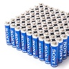 Sony Stamina Plus Alkaline Batteries (72-Pack)