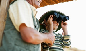 Cook's Bison Ranch: Up to 50% Off Bison Tours for 2,4,6,8 at Cook's Bison Ranch