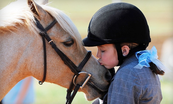 Fox Hollow Farm - Mooresville: Two or Four 30-Minute Private Horseback-Riding Lessons at Fox Hollow Farm (Up to 59% Off)