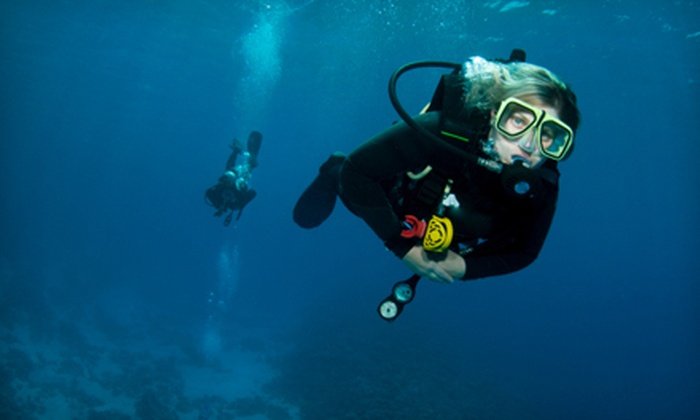 Albany Scuba - Albany: Discover Scuba Class or Open Water Diver Certification Course for One or Two at Albany Scuba (Half Off)