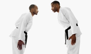 Ultimate MMA Academy: 10 Mixed Martial-Arts Classes at Ultimate MMA Academy (Up to 90% Off)