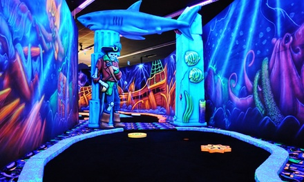 Black-Light Mini Golf for 2, 4, or Up to 12 at Canton Indoor Golf Center (Up to 50% Off)