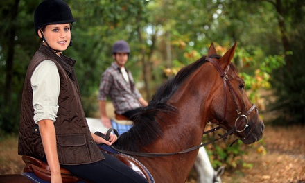 Horseback-Riding Lesson and Trail Ride for 2 or 4, or Private Lesson Package at Highland Farm (Up to 58% Off)