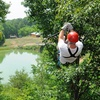 51% Off at North Georgia Canopy Tours