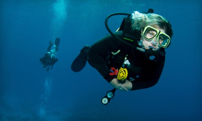 Central Ohio School of Diving - Don Scott: Introductory Scuba-Diving Class or Scuba Refresher Course at Central Ohio School of Diving (Up to 66% Off)