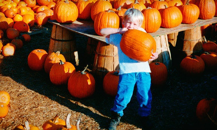 Green Hand Farm Park - Abingdon: Farm Fall Festival Visit and Pumpkins for Two, Four, or Six at Green Hand Farm Park (Up to 57% Off)