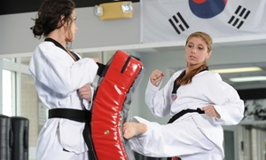 Master Shim's World Class Tae Kwon Do: Two Weeks or One Month of Unlimited Tae Kwon Do Lessons at Master Shim's World Class Tae Kwon Do (Up to 85%Off)
