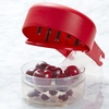 Progressive Six-At-Once Ultimate Cherry Pitter Tool