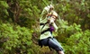 Up to 55% Off Zipline Adventure in Gilbertsville