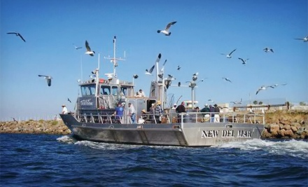 Whale-Watching and Nature Cruise for One or Two from Marina Del Rey Sportfishing (Up to 52% Off)