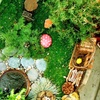 Up to 44% Off Fairy-Garden-Making Class at The Artful Fairy