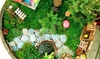 The Artful Fairy - Victor: Beginner Fairy-Garden-Making Class for One or Two at The Artful Fairy (Up to 48% Off)