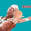 Up to 50% Off BODY WORLDS Exhibit at TX MOST