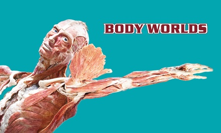 Body Worlds and the Cycle of Life Exhibit at the Texas Museum of Science and Technology (43% Off)