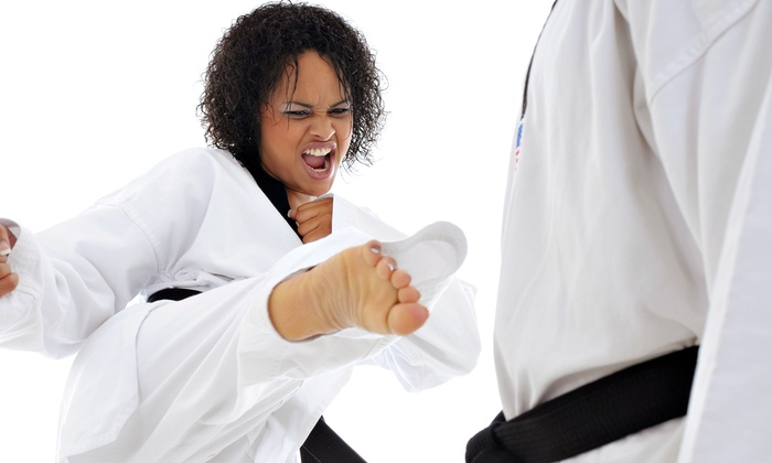 Red Seal Martial Arts Co. - Red Seal Martial Arts Co.: $77 for $140 Toward One Month Martial Arts Membership with Uniform— Red Seal Martial Arts Co.