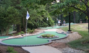 Up to 47% Off Mini Golf or Party at Lakeview Putt and Play at Lakeview Putt and Play, plus 6.0% Cash Back from Ebates.