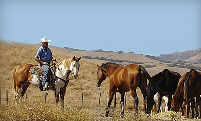 Chaparral - San Jose: $20 for One-Hour Horseback Ride at Chaparral in Milpitas ($40 Value)