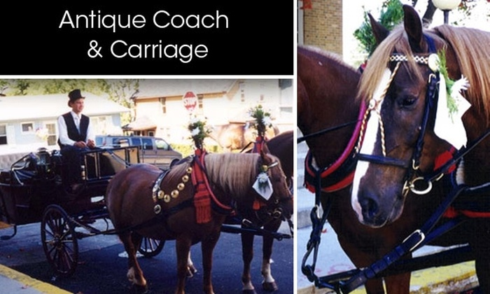 Antique Coach & Carriage - Chicago: Ride Through the City in a Horse-Drawn Carriage
