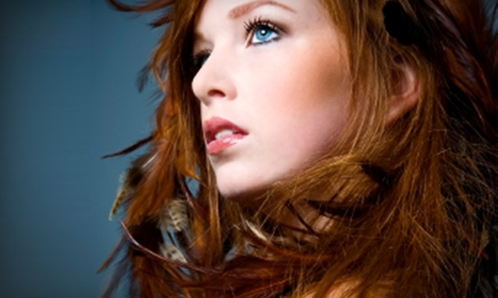5 Elements - Fort Wayne: $25 for $50 Worth of Hair Services at 5 Elements