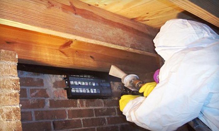 Pure Service Pro, LLC - Woodland Park: Mold Inspection or Mold Inspection and Credit Toward Remediation from Pure Service Pro, LLC (Up to 79% Off)