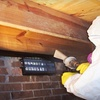 Up to 79% Off Mold Inspection and Remediation