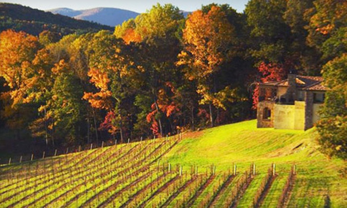 Montaluce Winery and Le Vigne Ristorante - Dahlonega: Winery Tour and Tasting for Two or Four at Montaluce Winery and Le Vigne Ristorante in Dahlonega (Up to 56% Off)