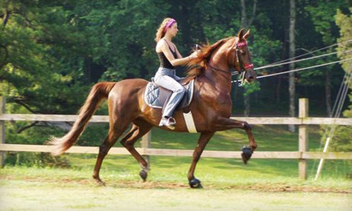 Rocking S Farm Riding Academy - Helena: $45 for Two One-Hour Private Horseback-Riding Lessons at Rocking S Farm Riding Academy ($90 Value)