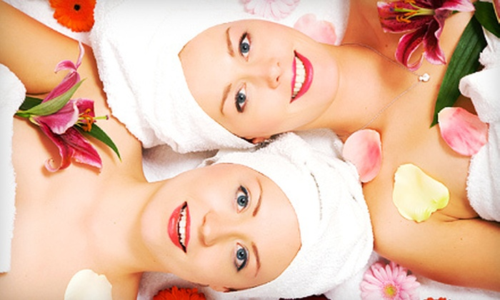 Dena Marie's Salon & Spa - Clinton Township: Spa Package with Facial and Hairstyling for One or Two at Dena Marie's Salon & Spa in Clinton Township (Up to 59% Off)