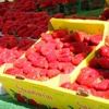 $8 for Two Tickets to BerryFest in Roseville