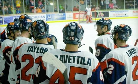 Kalamazoo Wings Hockey Game on Fri., Mar. 16 or Fri., Mar. 23 at 7:30PM: Red-Level Seating for 2 - Kalamazoo Wings in Kalamazoo