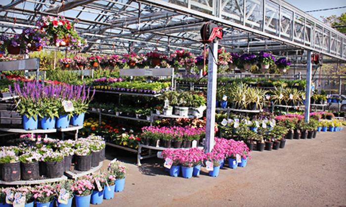 Orange Garden Center - City of Orange: $20 for $40 Worth of Garden Supplies and Plants at Orange Garden Center