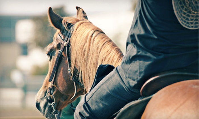 Music City Riding Academy - Nashville-Davidson metropolitan government (balance): $45 for a 90-Minute Horseback-Riding Lesson for Two at Music City Riding Academy in Antioch ($90 Value)