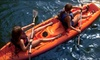 Buena Vista Watersports - Tampa Bay: One-Hour Rental of One or Two Kayaks or Standup Paddleboards at Buena Vista Watersports (Up to 62% Off)