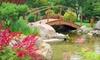 Schedel Arboretum & Gardens - Harris: $5 for One Adult Admission to the Schedel Arboretum & Gardens ($10 Value)